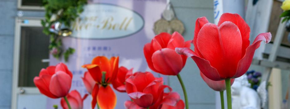 飛騨古川の美容室アトリエ・リーベル 美と健康で元気に!